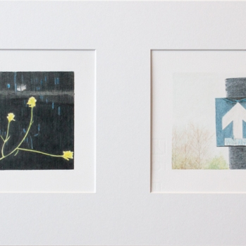'yellow flowers, Woolwich and footpath sign, Mucking Creek' 2020: coloured pencil; each drawing 20cm x 15cm; framed diptych 58cm x 28cm
