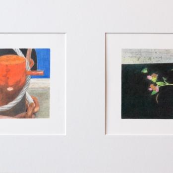 'orange capstan, Trinity Buoy Wharf and dead flowers, West Drayton' 2020: coloured pencil; each drawing 20cm x 15cm; framed diptych 58cm x 28cm